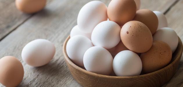 كيف تعرف البيض الفاسد في 3 ثوان؟