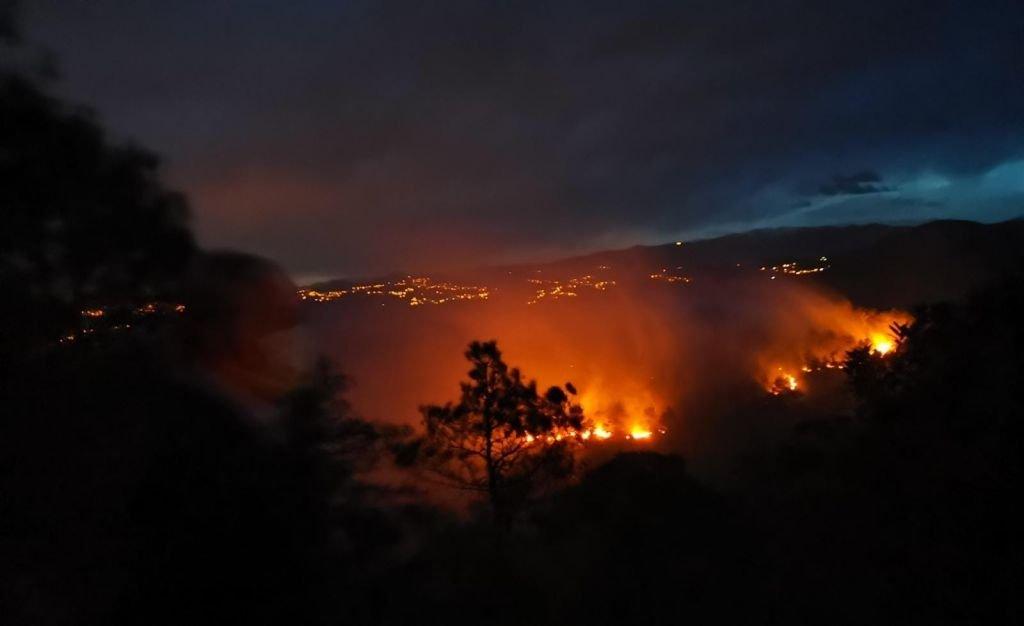 جانب من حرائق الغابات في طرابزون
