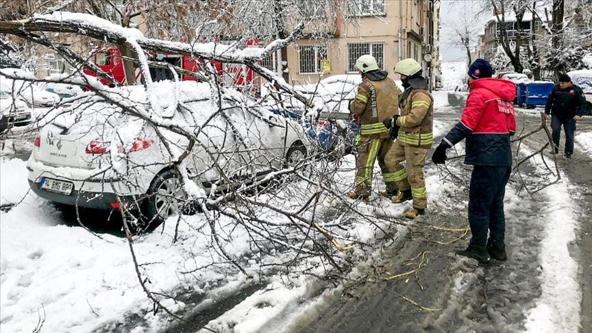 سقوط أشجار بفعل العواصف والثلج في اسطنبول