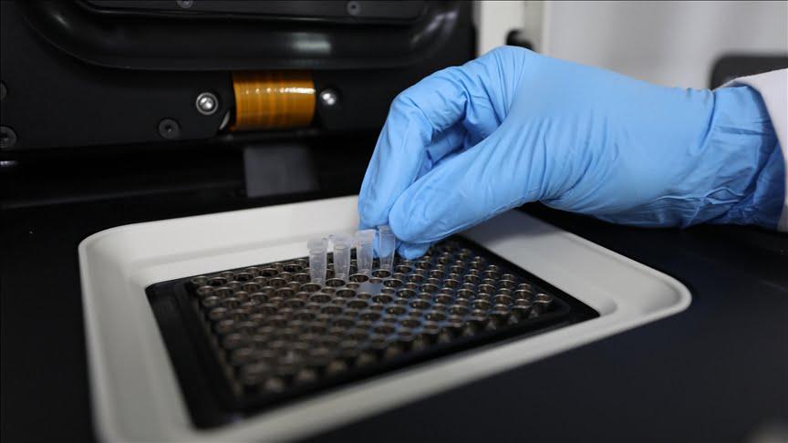 علماء أتراك يطورون اختبارات للكشف عن الطفرات المتعددة لفيروس كورونا