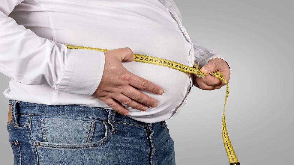 الدهون الحشوية