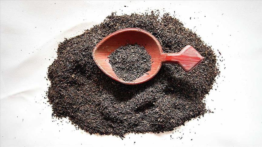 صادرات الشاي