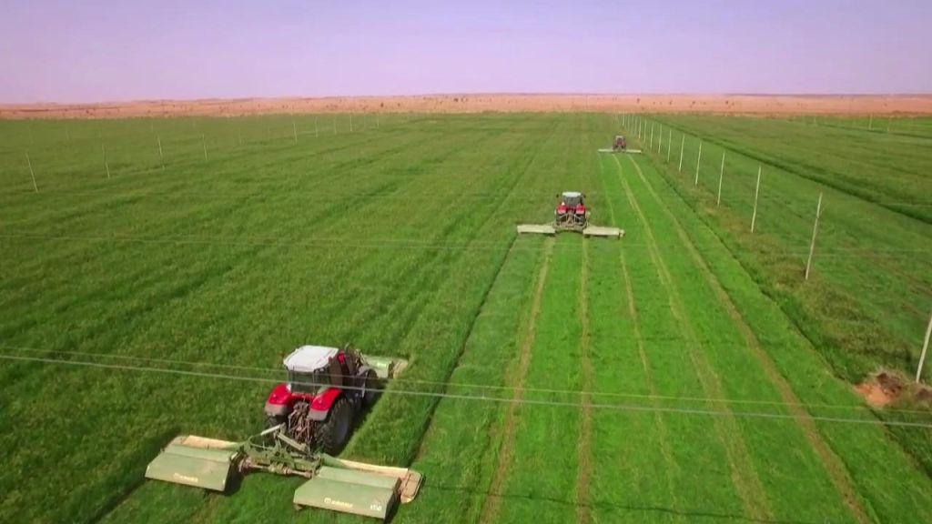 بواسطة تركيا.. تقنيات زراعية حديثة في السودان